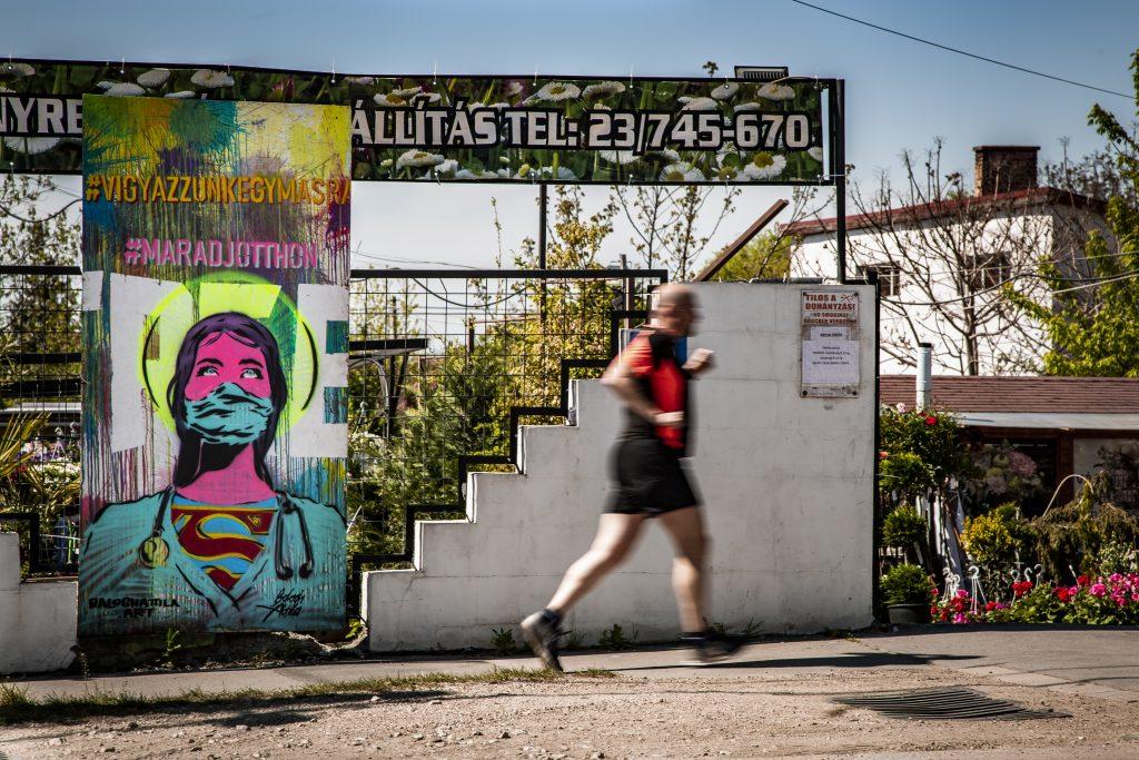 Korona Street Art OSB lap